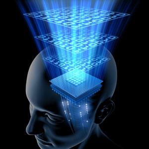プライスアクションJAPAN_脳の機能